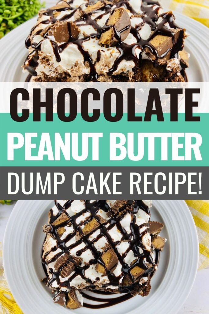 Pin showing the finished chocolate peanut butter dump cake ready to eat with title in the middle.